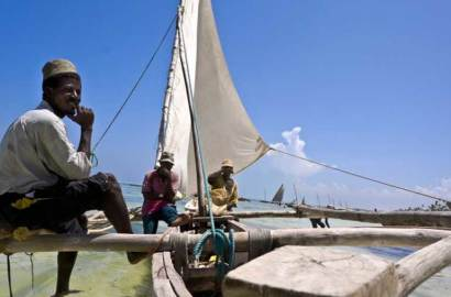 vie-locale-Zanzibar-côte-est
