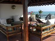villa-palm3